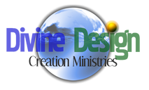 divine design - logo