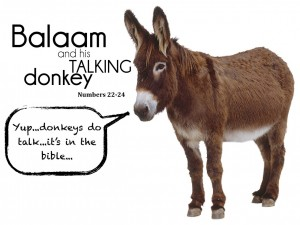 mindsoap - ridiculous, talking donkey