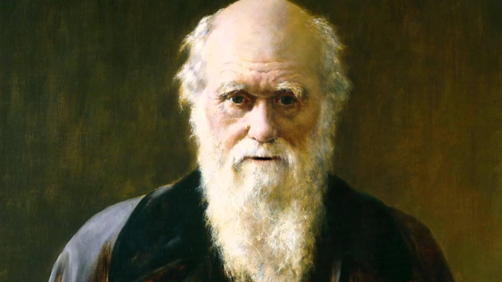 darwin - charles darwin